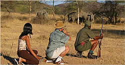 Limpopo Game Reserve Accommodation - Ka'ingo Reserve and Spa - Vaalwater Accommodation - Waterberg Game Reserves - Guided Bush Hikes